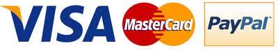 pago seguro Visa Mastercard Paypal